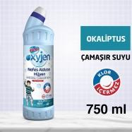 BİNGO ÇAMAŞIR SUYU 750ML BANYO (BEYAZ ÖTESİ) - 15'Lİ KOLİ