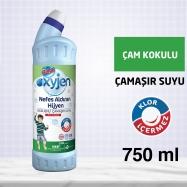 BİNGO OKSİJENLİ ÇAMAŞIR SUYU 750ML ÇAM KOKULU -15'Lİ KOLİ